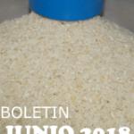 BOLETIN JUNIO 2018 BAGSA