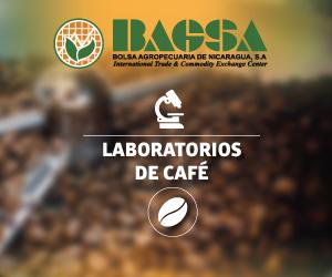 Laboratorio de café -BAGSA