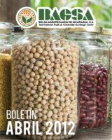 BOLETIN ENERO 2019 BAGSA