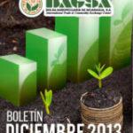 BAGSA BOLETIN DICIEMBRE 2013