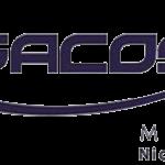 SACOS MACSA- PUESTO DE BOLSA- BAGSA
