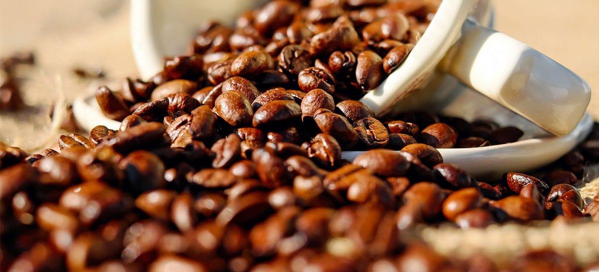 MUESTRA DE CAFÉ