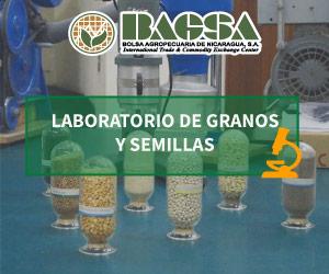Laboratorio de granos y semillas BAGSA